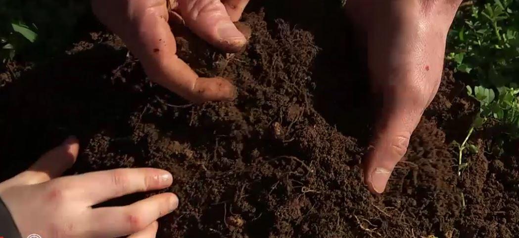 Vers une agriculture plus respectueuse des sols