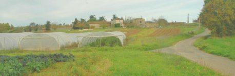 La Capelle Cabanac