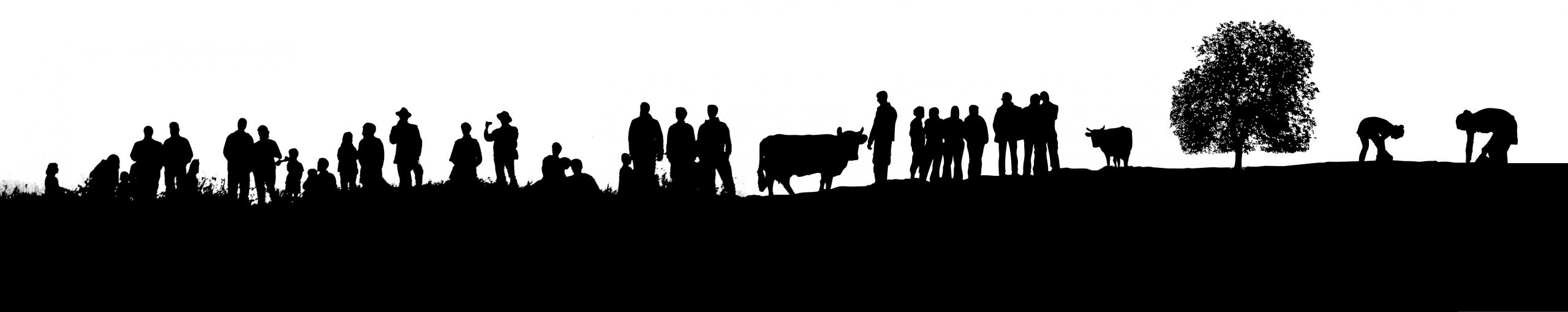 Envie d'être bénévole à Terre de Liens Midi-Pyrénées ?