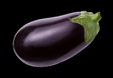 Terre de Liens dans une aubergine