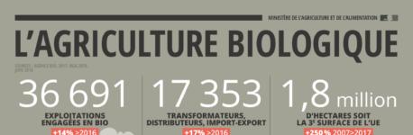 Un point sur la Bio (infographie)