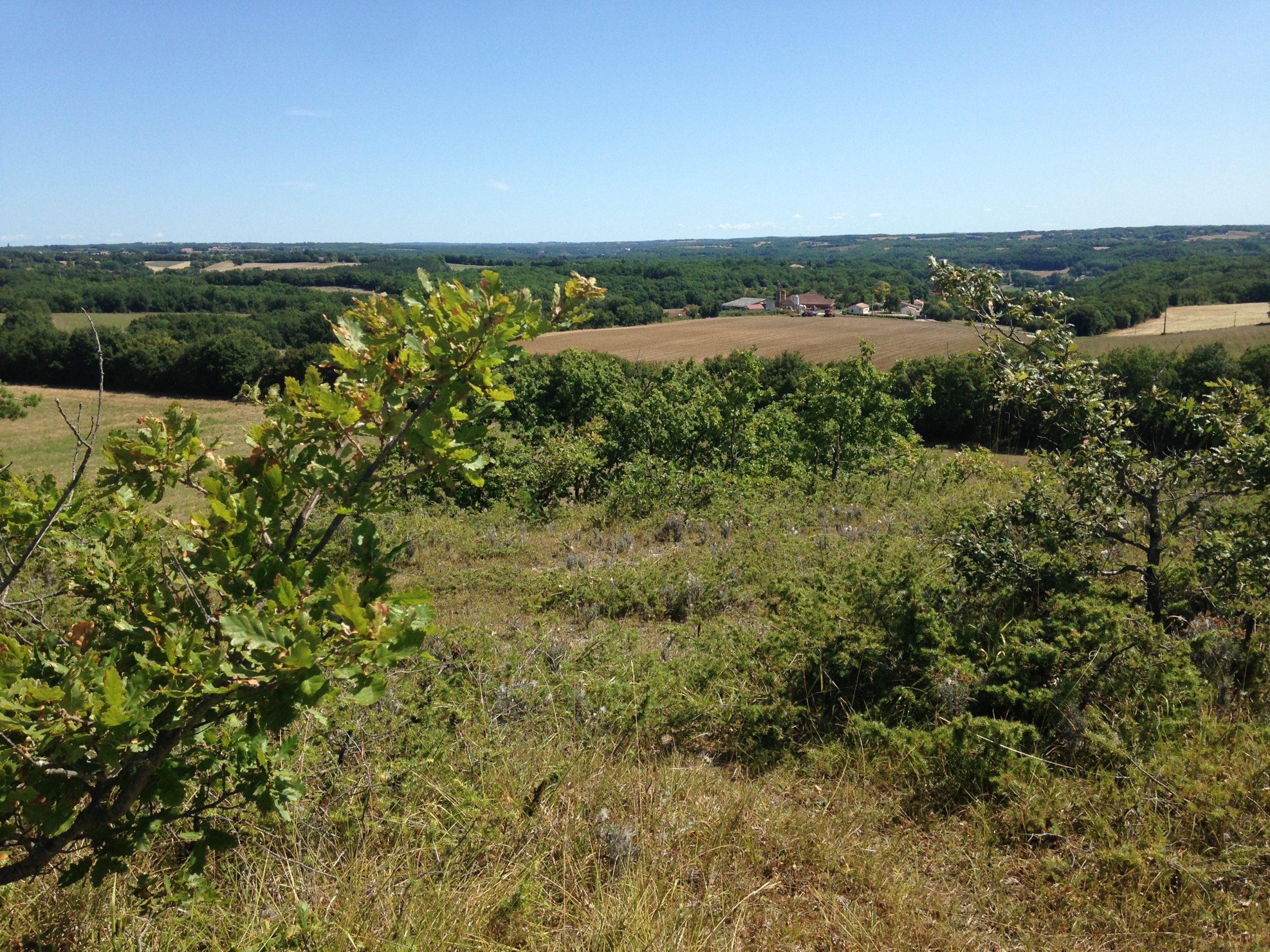 Pech Berthié : la première ferme Terre de Liens du Tarn et Garonne (82)